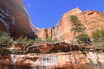 Zion National Park - Emerald Pools Trail