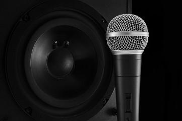 microphone and loudspeaker