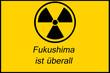 Fukushima Atom Schild