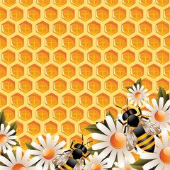 Honey Floral Background