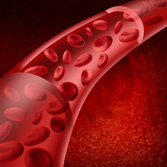 Blood cells flowing through veins and human circulatory system