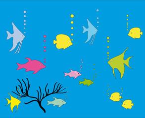 Zierfische im Aquarium