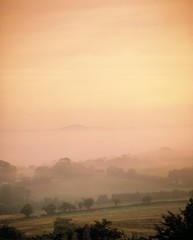 Co Wexford, Ireland; Mist Over A Landscape