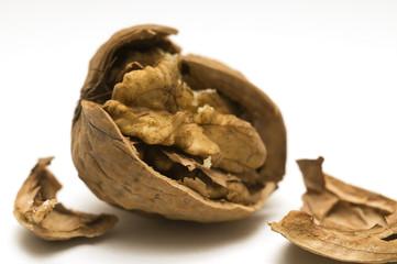 walnut shell cracked