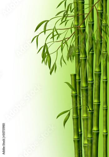 Fototapeten,bambu,ausreisen,hintergrund,holz