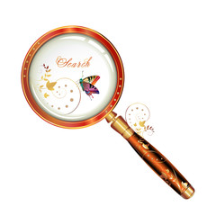 Magnifying glass isolated and butterfly
