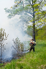 Suppression of forest fire 68