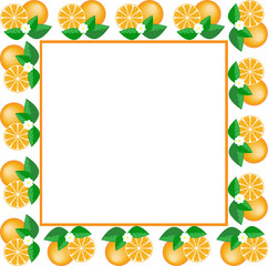 white square frame made of fruit and orange flower