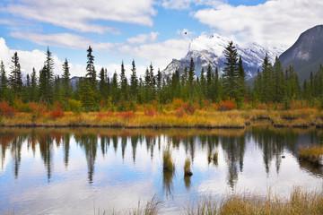 Charming small lake
