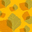 leafs texture - seamless pattern. vector illustration