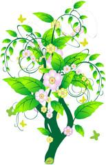 Вьющееся растение