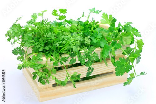 Italian parsley and  chervil
