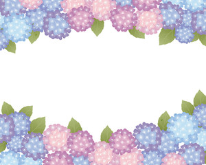 hydrangea background