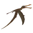 Dinosaur Anhanguera Pterosaur. 3D rendering with clipping path