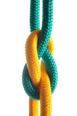 Rope with marine knot on white background. series of photos iso