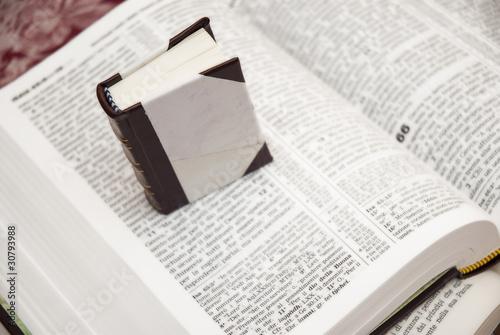 Micro e macro libro