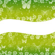 spring green background with butterflies and flowers