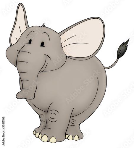 Elefant, Zoo, dick, Afrika, Indien, Zirkus