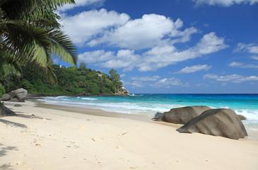 plage idyllique de sable fin aux Seychelles