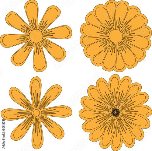 Нарисованные цветы стоковое