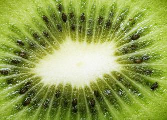 Slice of kiwi macro