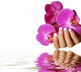 Fototapety Orchidee Wasserspiegelung
