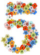 Number five floral, vector