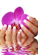Wasserspiegelung Frauenhand mit Orchidee