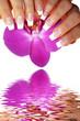 schöne Orchidee Wasserspiegelung