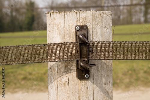 Fotobehang Paardrijden isolateur de clôture électrique