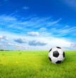 soccer ball and green grass