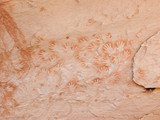 Historic Anasazi Hand Prints