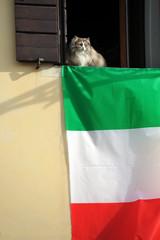 bandiera italiana 6