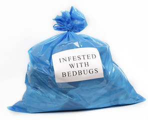 Infested with bedbugs
