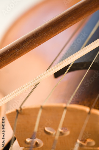 Close-up on violin
