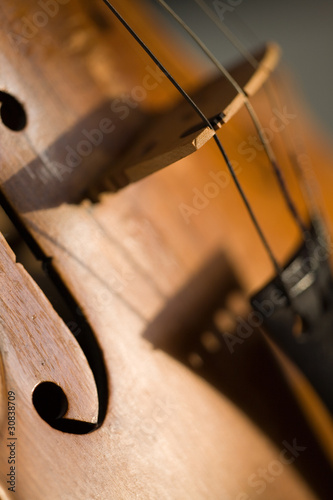 abstract violin shadow close-up