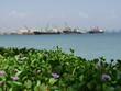 Vue sur le port de Djibouti