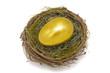 Goldei Ei Nest Gold
