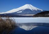 Fototapety 富士山 山中湖にて