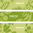 Green leaf banner set