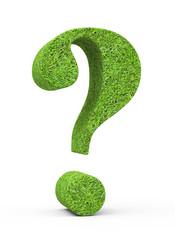 Fragezeichen in Grasoptik