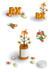 Herbal remedies page 2