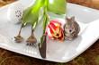 Dinner zu Ostern - 30889985