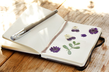 dry plants on the notebook