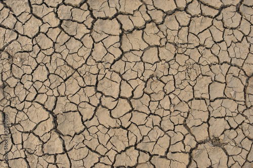 Dried Earth Background - 30896913
