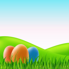 Vector easter eggs on grass