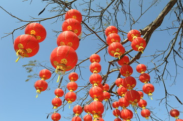 Festive chinese red lantern decorations