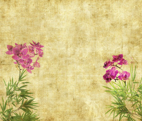 orchids with bamboo leaves