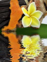 vanille, curcuma et fleur de frangipanier, île de la Réunion