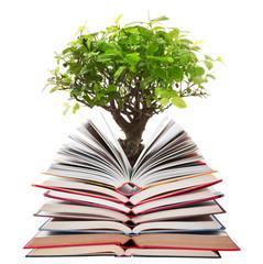 libri aperti con albero